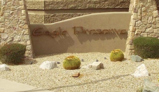 27321 N 63rd Drive, Phoenix, AZ 85083 (MLS #5740118) :: Brett Tanner Home Selling Team