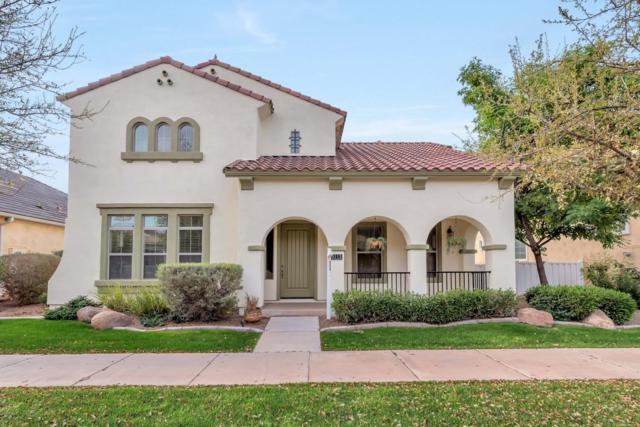 3113 E Agritopia Loop, Gilbert, AZ 85296 (MLS #5740125) :: Brett Tanner Home Selling Team