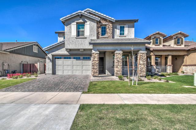3142 E Appaloosa Road, Gilbert, AZ 85296 (MLS #5740148) :: Conway Real Estate