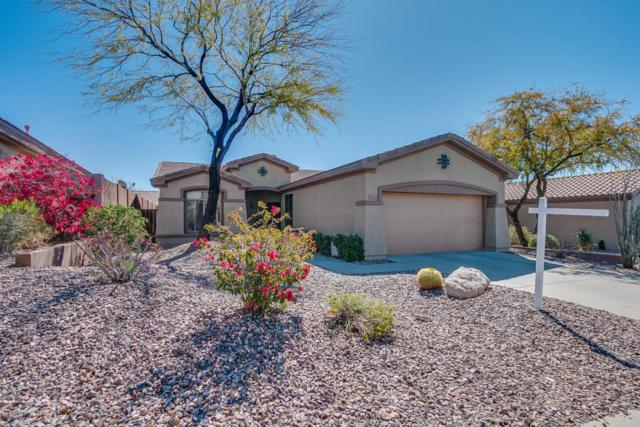 41253 N Belfair Way, Anthem, AZ 85086 (MLS #5740153) :: Riddle Realty