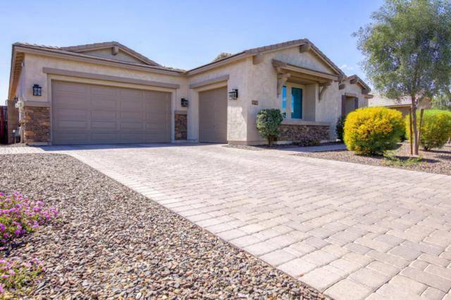 3717 E Strawberry Drive, Gilbert, AZ 85298 (MLS #5740171) :: Conway Real Estate