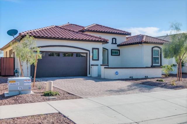 19241 E Thornton Road, Queen Creek, AZ 85142 (MLS #5740193) :: Team Wilson Real Estate