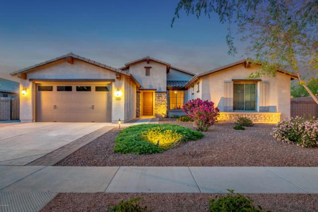 178 W Powell Way, Chandler, AZ 85248 (MLS #5740194) :: Conway Real Estate