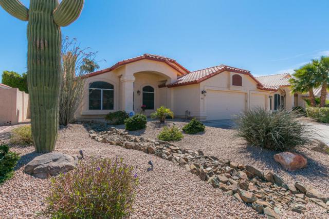 9547 W Potter Drive, Peoria, AZ 85382 (MLS #5740195) :: Conway Real Estate