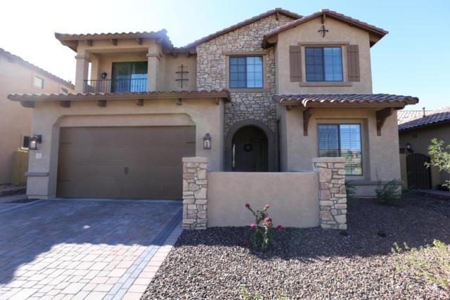 9047 E Indigo Street, Mesa, AZ 85207 (MLS #5740200) :: Conway Real Estate