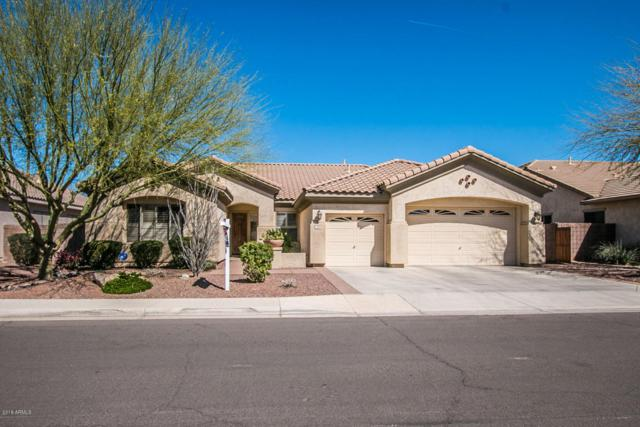 1200 E Kaibab Place, Chandler, AZ 85249 (MLS #5740226) :: Group 46:10