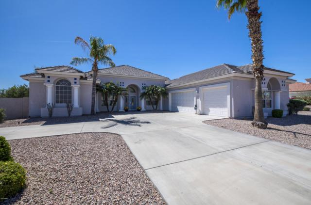 12705 W Montebello Avenue, Litchfield Park, AZ 85340 (MLS #5740248) :: The Everest Team at My Home Group