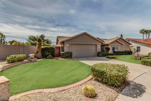 4039 E Morrow Drive, Phoenix, AZ 85050 (MLS #5740267) :: Conway Real Estate