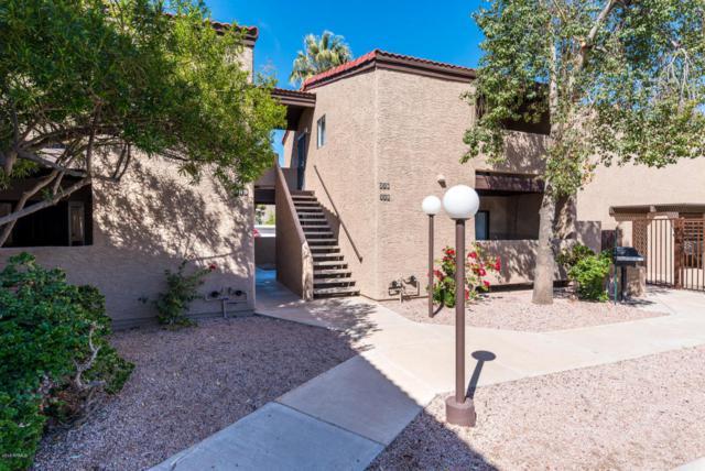 2320 N 52ND Street #218, Phoenix, AZ 85008 (MLS #5740272) :: Conway Real Estate