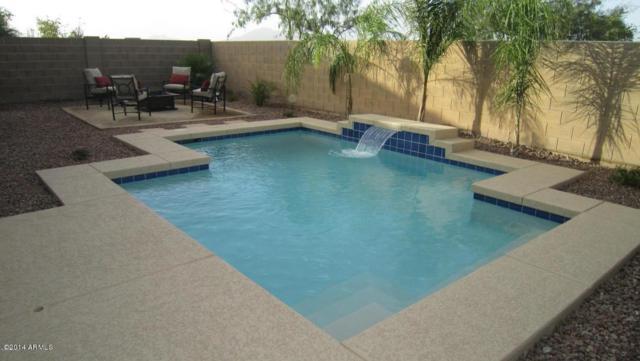44288 W Eddie Way, Maricopa, AZ 85138 (MLS #5740305) :: Conway Real Estate