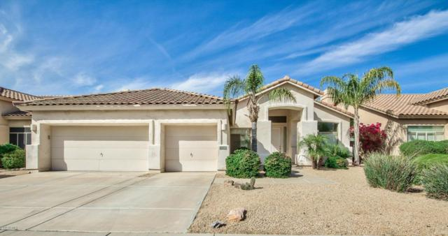 14488 N 98TH Place, Scottsdale, AZ 85260 (MLS #5740306) :: Conway Real Estate