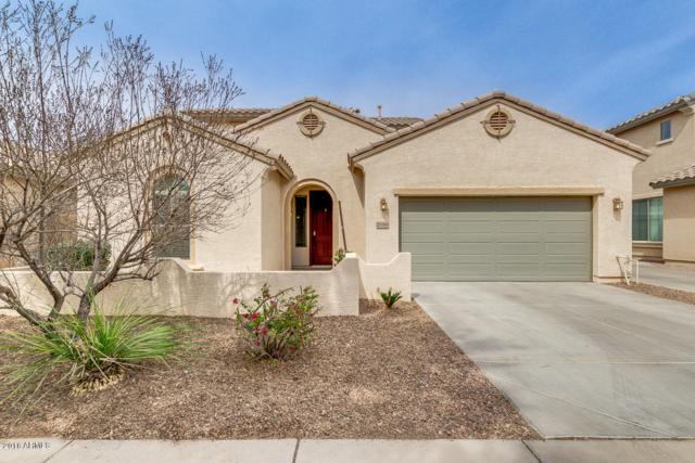 21068 E Pickett Street, Queen Creek, AZ 85142 (MLS #5740337) :: Revelation Real Estate
