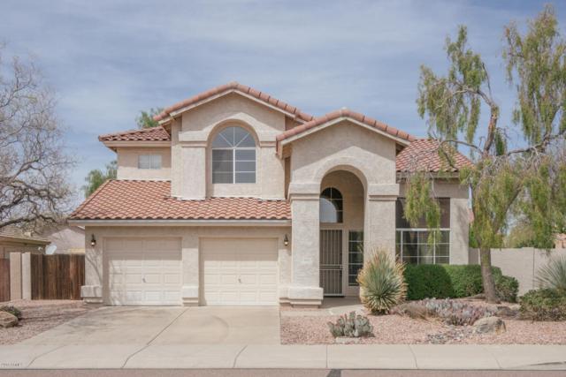 4192 E Desert Marigold Drive, Cave Creek, AZ 85331 (MLS #5740377) :: Riddle Realty