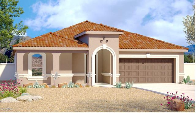 18393 N Arbor Drive, Maricopa, AZ 85138 (MLS #5740501) :: Occasio Realty