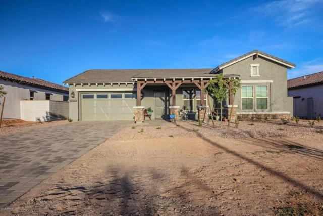 12867 N 145th Avenue, Surprise, AZ 85379 (MLS #5740516) :: Kortright Group - West USA Realty