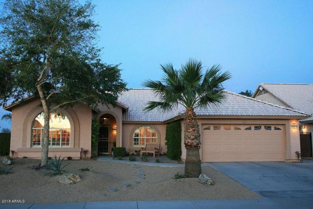 2466 N 134TH Avenue, Goodyear, AZ 85395 (MLS #5740525) :: Kortright Group - West USA Realty