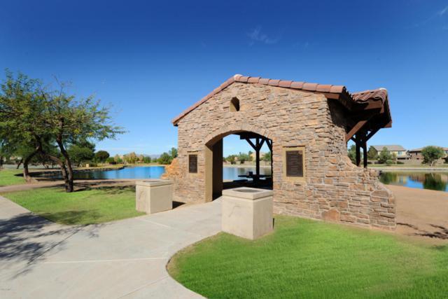 19096 N Jameson Drive, Maricopa, AZ 85138 (MLS #5740596) :: Yost Realty Group at RE/MAX Casa Grande