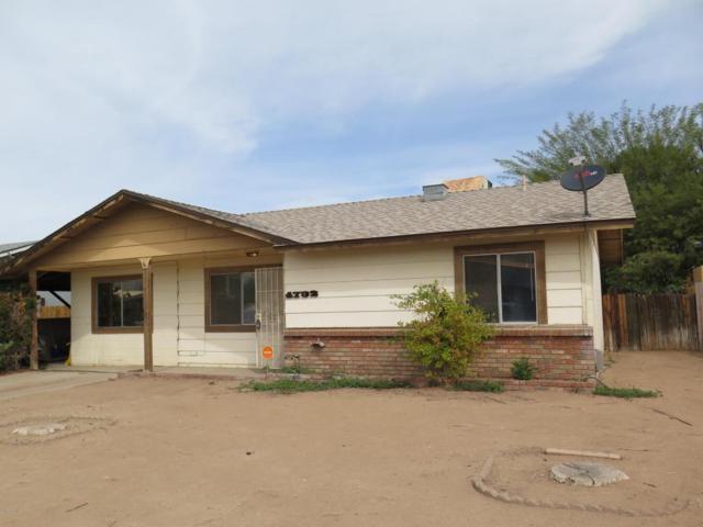 4732 E Apollo Road, Phoenix, AZ 85042 (MLS #5740610) :: Group 46:10