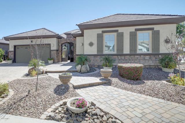 1153 E Holbrook Street, Gilbert, AZ 85298 (MLS #5740622) :: Keller Williams Realty Phoenix