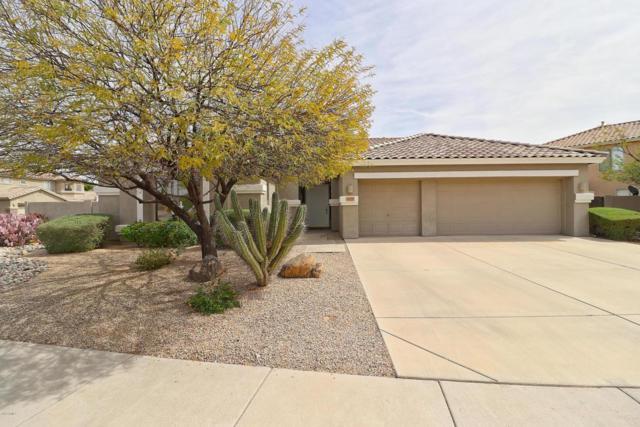 25207 N 44TH Avenue, Phoenix, AZ 85083 (MLS #5740634) :: Group 46:10