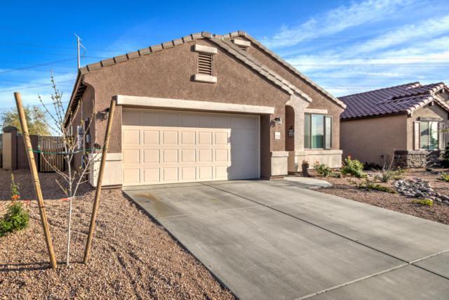 23759 W Magnolia Drive, Buckeye, AZ 85326 (MLS #5740636) :: Occasio Realty