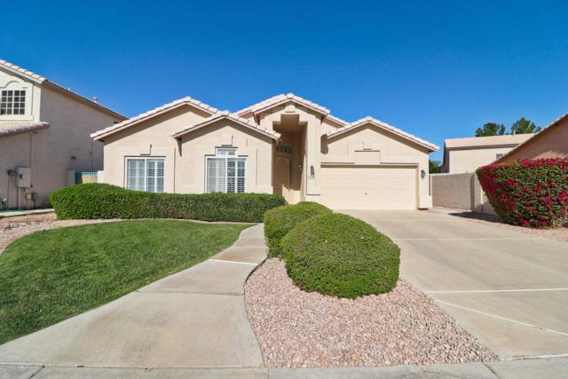 13778 W Vernon Avenue, Goodyear, AZ 85395 (MLS #5740687) :: Kortright Group - West USA Realty