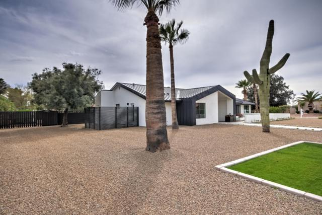 7001 E Dreyfus Avenue, Scottsdale, AZ 85254 (MLS #5740717) :: Occasio Realty