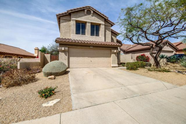 10402 E Saltillo Drive, Scottsdale, AZ 85255 (MLS #5740749) :: Occasio Realty