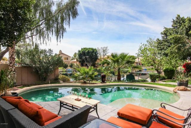 635 W Desert Broom Drive, Chandler, AZ 85248 (MLS #5740753) :: Revelation Real Estate