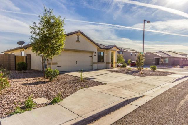 24549 W Mobile Lane, Buckeye, AZ 85326 (MLS #5740786) :: Occasio Realty