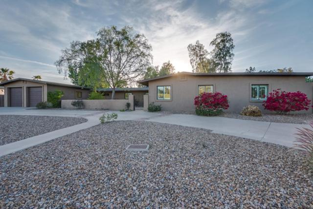 12624 N 66th Street, Scottsdale, AZ 85254 (MLS #5740915) :: Riddle Realty