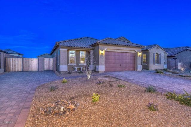 24831 N 79TH Lane, Peoria, AZ 85383 (MLS #5740949) :: Riddle Realty