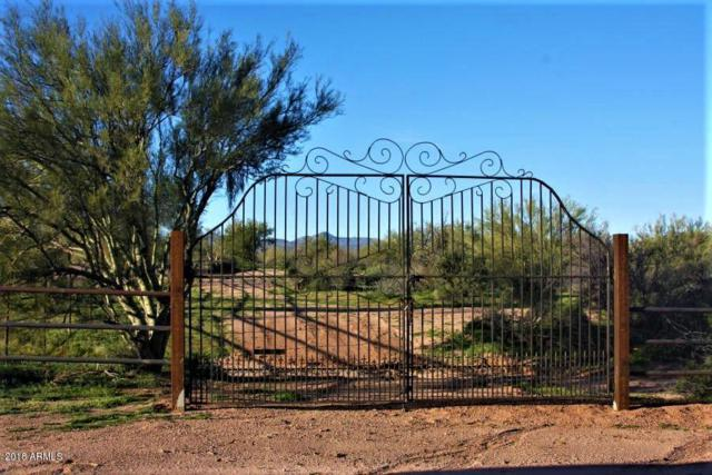 157XX E Dixileta Drive, Scottsdale, AZ 85262 (MLS #5740962) :: Riddle Realty