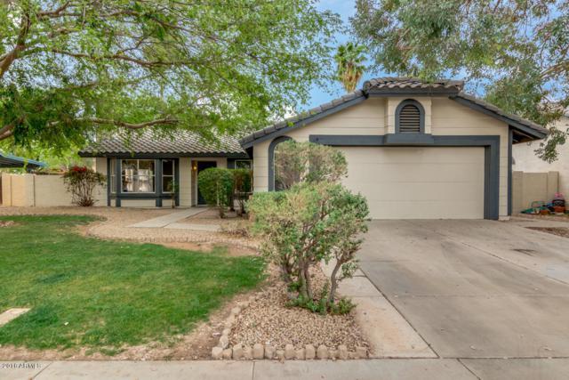 1427 E Jasper Drive, Chandler, AZ 85225 (MLS #5740967) :: Essential Properties, Inc.