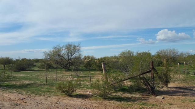 0 N Dead Mans Gulch Road, Florence, AZ 85132 (MLS #5740980) :: Riddle Realty