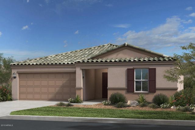 1811 E Grove Street, Phoenix, AZ 85040 (MLS #5740984) :: Riddle Realty