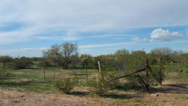0 N Dead Mans Gulch Road, Florence, AZ 85132 (MLS #5740987) :: Riddle Realty