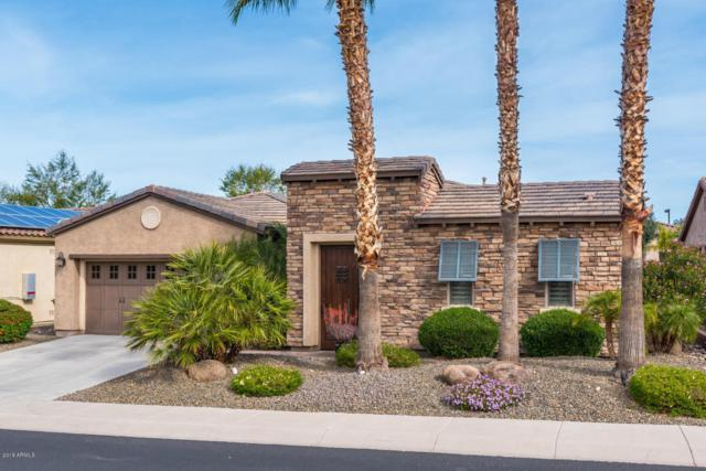 12464 W Pinnacle Vista Drive, Peoria, AZ 85383 (MLS #5740997) :: Riddle Realty