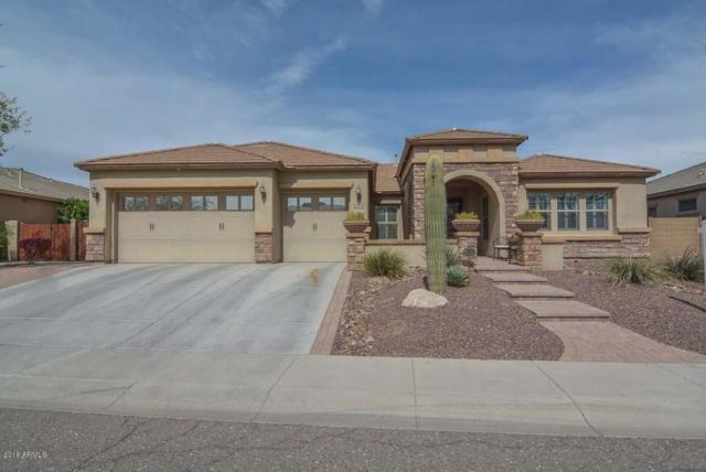 5704 W Bent Tree Drive, Phoenix, AZ 85083 (MLS #5741014) :: REMAX Professionals