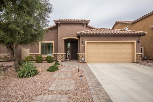 26344 N 107TH Lane, Peoria, AZ 85383 (MLS #5741159) :: 10X Homes