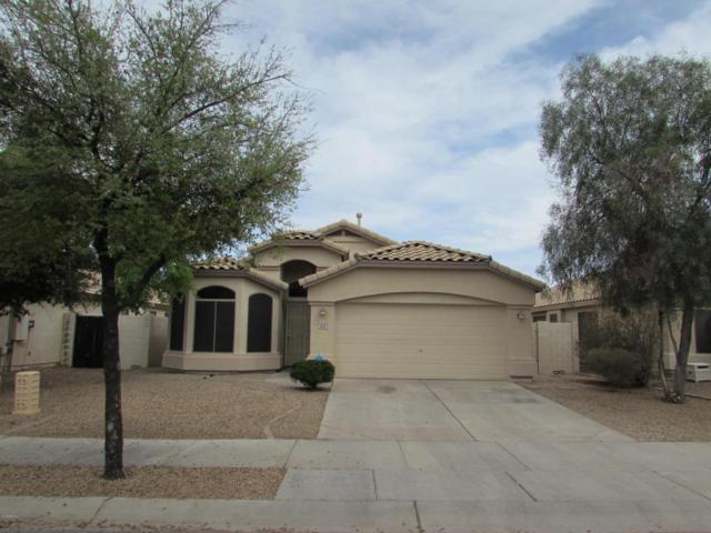 1213 N 159TH Drive, Goodyear, AZ 85338 (MLS #5741163) :: 10X Homes