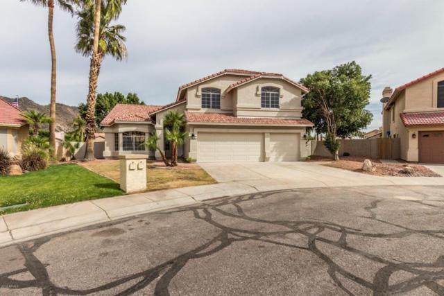 5547 W Rose Garden Lane, Glendale, AZ 85308 (MLS #5741171) :: REMAX Professionals