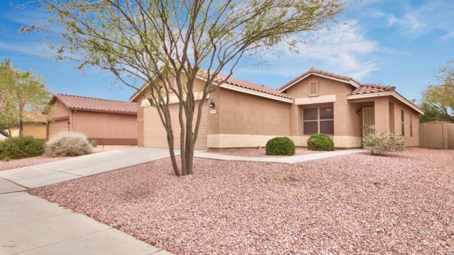 3048 W Roberta Drive, Phoenix, AZ 85083 (MLS #5741197) :: Kelly Cook Real Estate Group