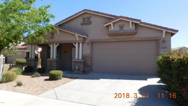 38163 N Longhorn Street, San Tan Valley, AZ 85140 (MLS #5741206) :: Revelation Real Estate