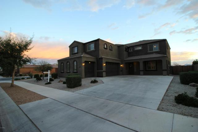 22226 E Via Del Verde Street, Queen Creek, AZ 85142 (MLS #5741217) :: Team Wilson Real Estate