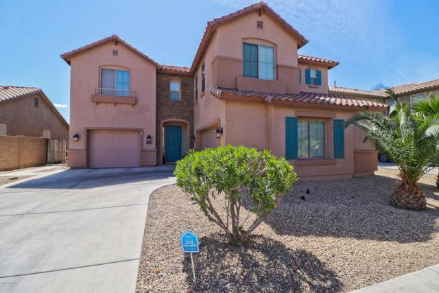 16543 W Hadley Street, Goodyear, AZ 85338 (MLS #5741264) :: Kortright Group - West USA Realty