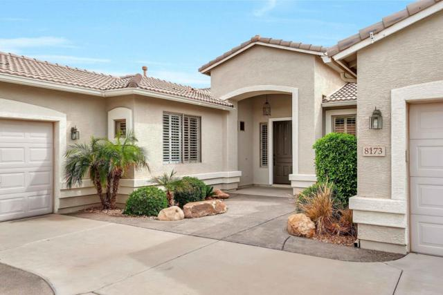 8173 W Gelding Drive, Peoria, AZ 85381 (MLS #5741307) :: 10X Homes