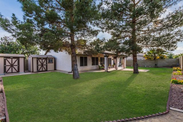 7826 W Hearn Road, Peoria, AZ 85381 (MLS #5741317) :: 10X Homes
