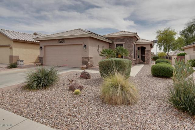 23003 W Twilight Trail, Buckeye, AZ 85326 (MLS #5741323) :: 10X Homes