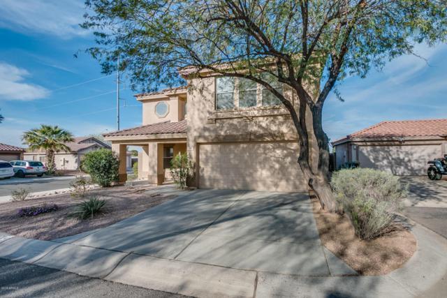 704 E Michigan Avenue, Phoenix, AZ 85022 (MLS #5741359) :: Essential Properties, Inc.